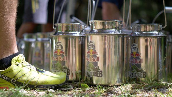 Kraft und Ausdauer im Zillertal: der Red Bull Almauftrieb 2019