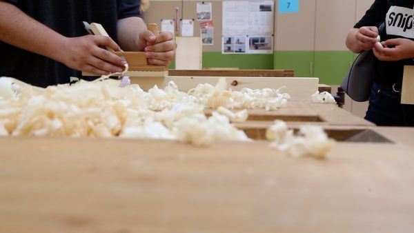 Tag des Holzes - pro:Holz veranstaltet Holzolympiade