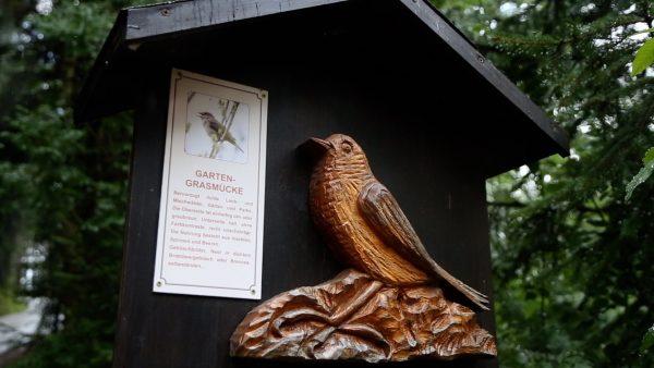 Auf dem Vogellehrpfad in Hart im Zillertal