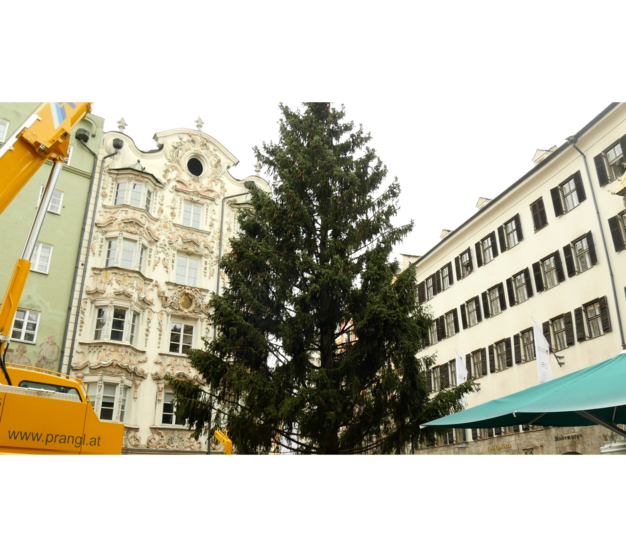 Der Innsbrucker Christbaum steht bereits