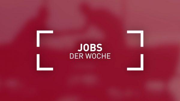 Der aktuelle Stellenmarkt // KW 6