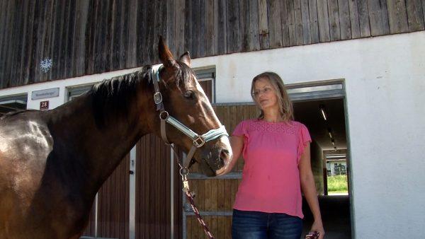 Adelige Pferdediebin