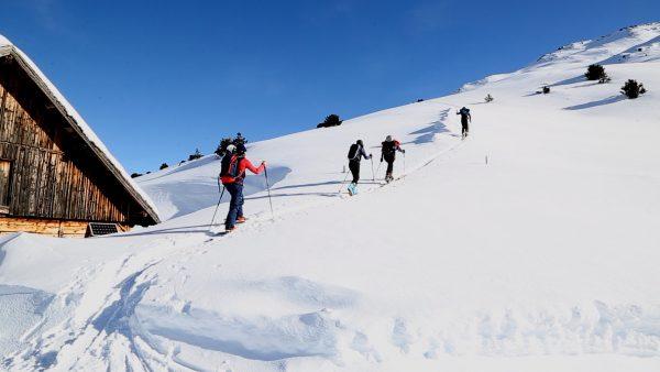 Skitour, Wald und Wild