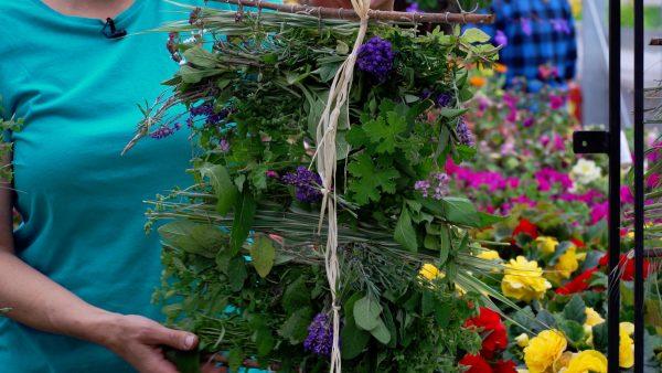 Tirol blüht auf - Kräuter-, und Blumenteppiche