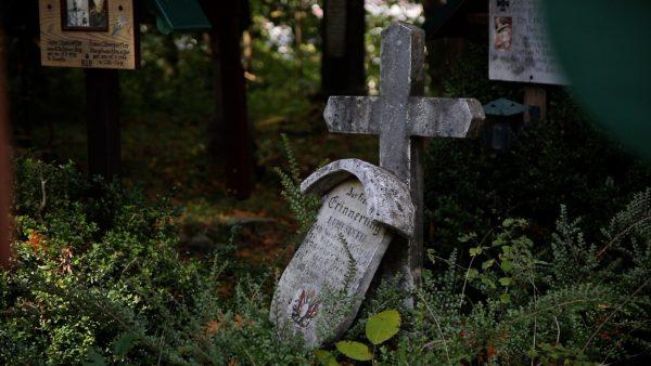 Ein historischer Waldfriedhof