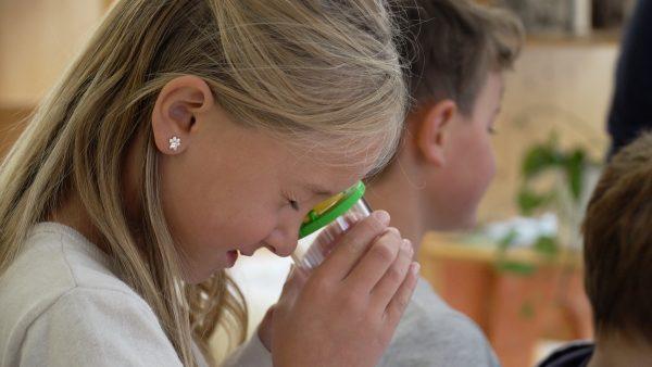 Naturpark-Schule VS Längenfeld bekommt die Bestnote